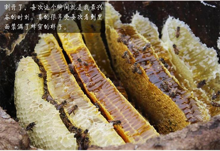 土蜂蜜,婺源土蜂蜜特产
